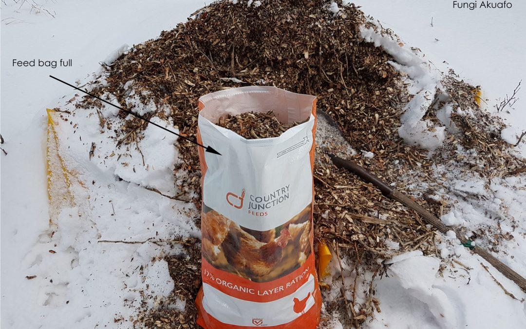 Poplar Wood Chips