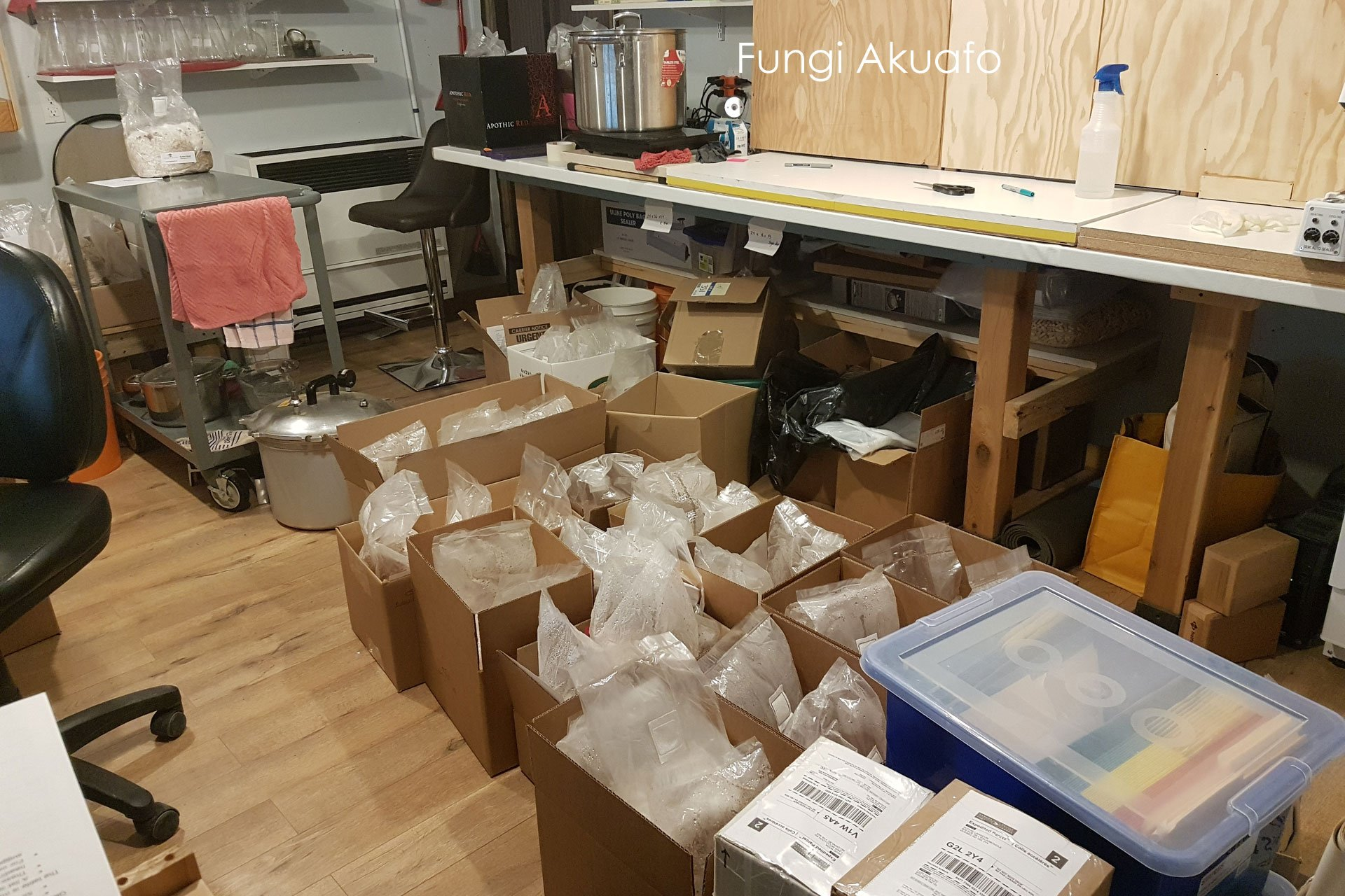 Shipping Orders