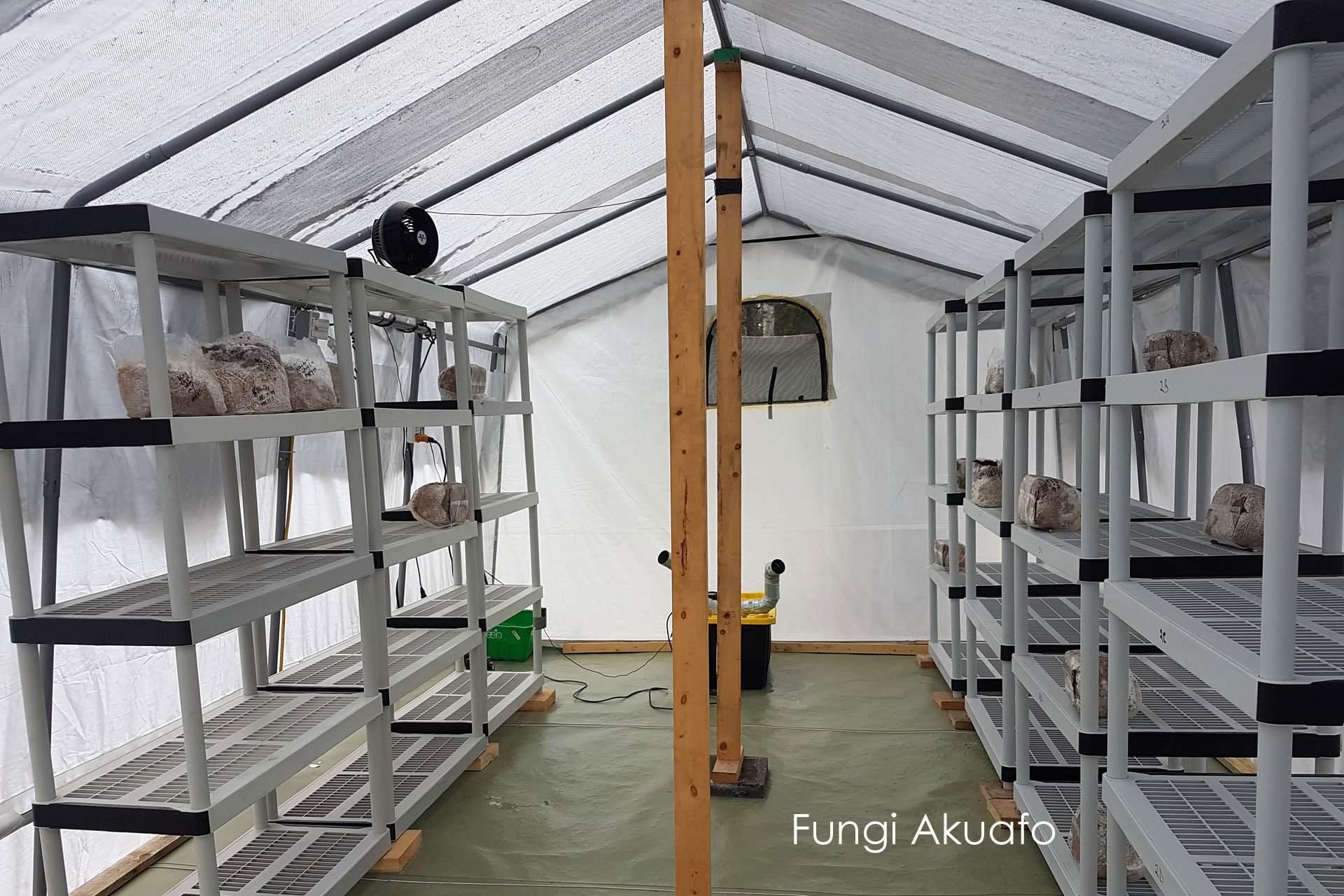Fungi Greenhouse