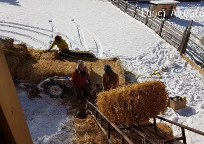 Bale loader